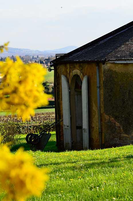 chateau_buffavent_galery_1
